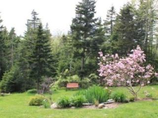 Beautiful House with Deck and Internet Access - Halifax vacation rentals