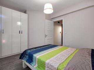 TAKSİM CİHANGİR AREA WİTH GARDEN - Istanbul Province vacation rentals