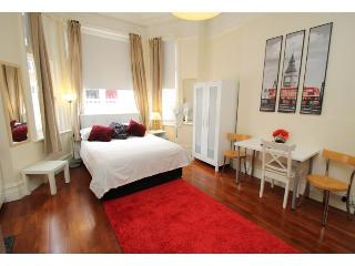 Charming Studio Apartment, Barons Court - London vacation rentals