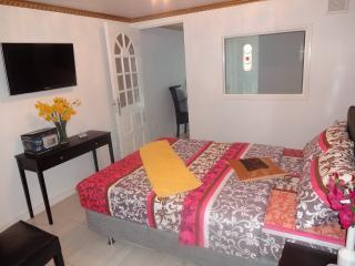 Golden Hans Family Suite Amsterdam - Amstelveen vacation rentals