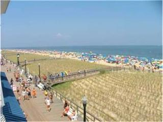 313 Blue Surf - Bethany Beach vacation rentals
