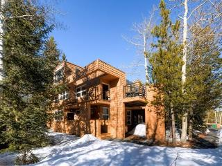 Cabin Creek Townhome - Frisco vacation rentals