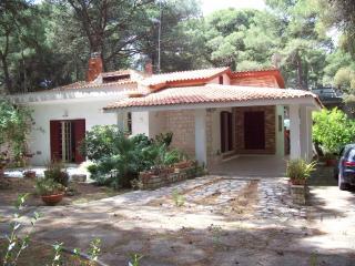 Appartamento in villa con patio e giardino - Castellaneta Marina vacation rentals