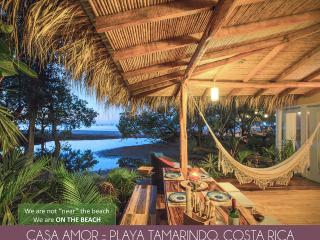 Casa Amor On Tamarindo Beach - Tamarindo vacation rentals