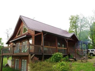Beautiful Log home, on wine trail, amazing view - Makanda vacation rentals