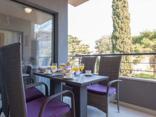 Beautiful Condo with Internet Access and Dishwasher - Dubrovnik vacation rentals
