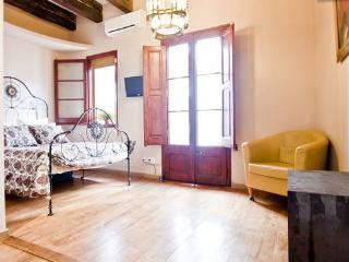 bonbonniere in  center of city - Barcelona vacation rentals