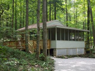 Convenient Cottage with Deck and Internet Access - Canaan vacation rentals