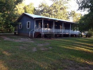 Perfect House with Internet Access and A/C - Talladega vacation rentals