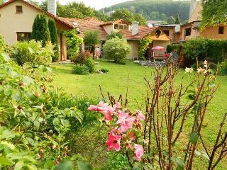 Beautifully restored villa in spa town - Trencianske Teplice vacation rentals