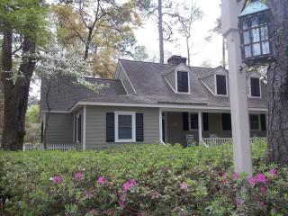 Awesome Contemporary Cottage... King Bed... dog ok - Murrells Inlet vacation rentals