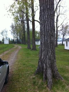 Strawberry Acres Cottages~Blueberry & Strawberry - Newport Center vacation rentals