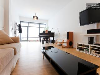 Beautiful Piano duplex heart of EU - Etterbeek vacation rentals