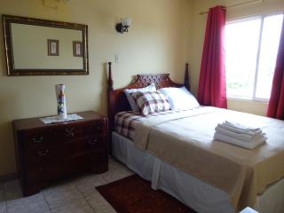 Vacation Rental - New Kingston Apt - Kingston vacation rentals