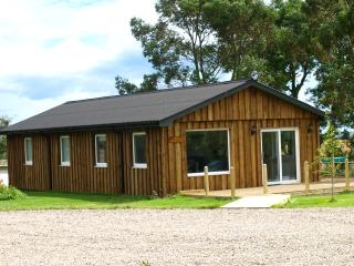 Comfortable Lodge with Deck and Iron - Montrose vacation rentals