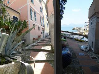 Cozy 2 bedroom Apartment in Tellaro - Tellaro vacation rentals