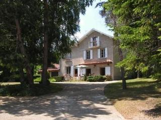 Charming villa near town of Le Puy-en-Velay center - Le Puy-en Velay vacation rentals