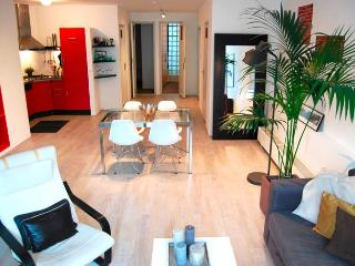Enzo Apartment - Amsterdam vacation rentals