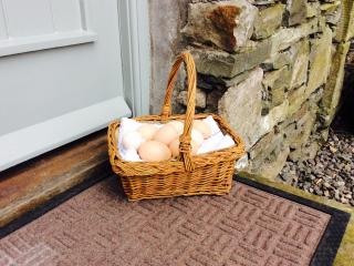 Lovely Cottage in Kendal with Dishwasher, sleeps 4 - Kendal vacation rentals
