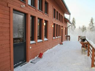 2 bedroom Cottage with Internet Access in Hankasalmi - Hankasalmi vacation rentals