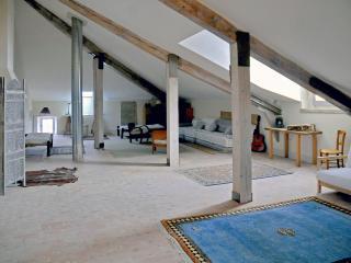 penthouse 185 m2 st marc, unique view, forcalquier - Forcalquier vacation rentals