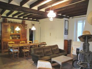 Nice House with Internet Access and Books - Sens vacation rentals
