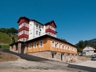Snezka Residence app. 4 - Vrchlabi vacation rentals