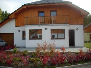 Lipno n. Vltavou SLA310 - Lipno nad Vltavou vacation rentals