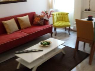 LIVING IN GALATA - Istanbul vacation rentals
