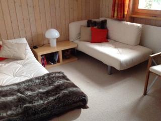 Cosy 2 bedrooom Chalet appartment in the Swiss Alp - Zweisimmen vacation rentals