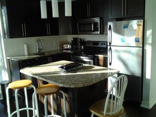 2beds and 2baths Luxury Condo Downtown Parliament - Ottawa vacation rentals