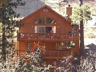 Big Bear Mountain Chalet - Big Bear Lake vacation rentals