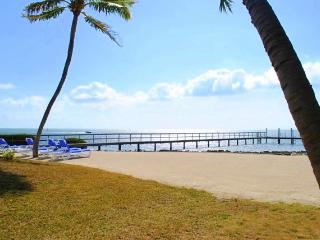 Windy Cove Townhomes - Islamorada vacation rentals