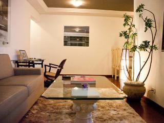 Charming spacious Itaim Bibi II - Sao Paulo vacation rentals