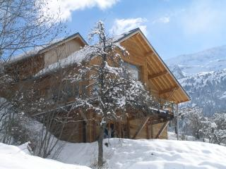 Lovely Chalet with Internet Access and Dishwasher - Vaujany vacation rentals