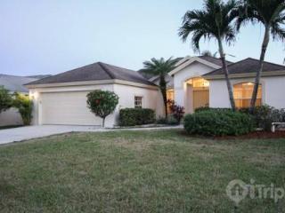 Briarwood 4 BD/3BA, 2-Car Garage, Pool Home w/Sweeping Lake Views! - Naples vacation rentals