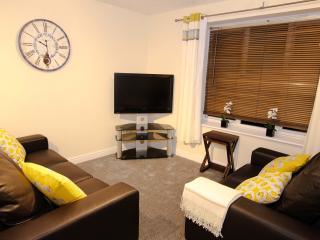 Nice Condo with Internet Access and Central Heating - Leamington Spa vacation rentals