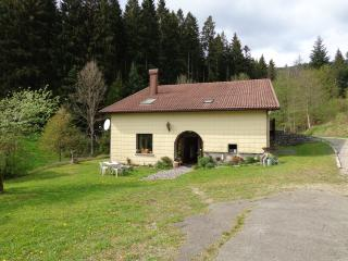 Nice Gite with Internet Access and Wireless Internet - Bussang vacation rentals