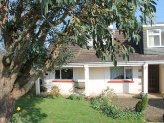 Nice 1 bedroom Manaton Cottage with Internet Access - Manaton vacation rentals