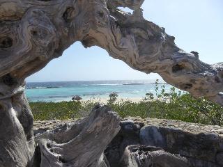 Baby Beach/Seroe Colorado House Rental - Aruba vacation rentals