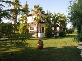 Villa for 9 people in the Aegean Sea - Sani vacation rentals