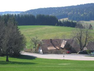 2 bedroom House with Internet Access in Herrischried - Herrischried vacation rentals