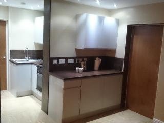 Dinas Apartments No.3 - Liverpool vacation rentals