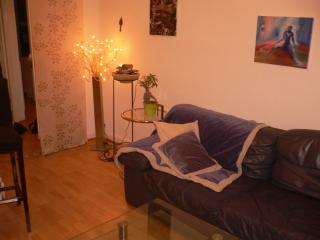 Quiet large apartment downtown Nice - Nice vacation rentals