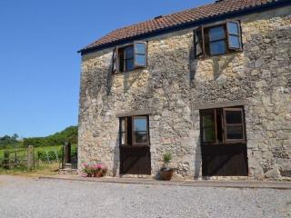Higher Plot Vineyard Barn Langport  Somerset - Langport vacation rentals
