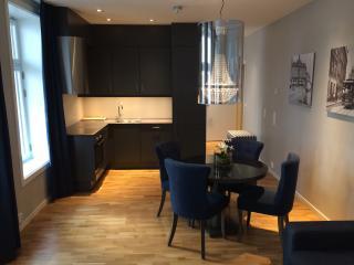 5 star Hotel standard! Near centrum - Oslo vacation rentals