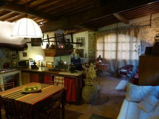 Loft in campagna Toscana vicino a città d'arte - Serravalle Pistoiese vacation rentals