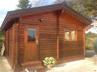 Self catering cosy cabin - Clonmel vacation rentals