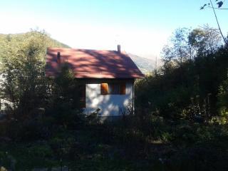 En las verdes montanas de Pistoia a pocos pasos de - Pian Degli Ontani vacation rentals