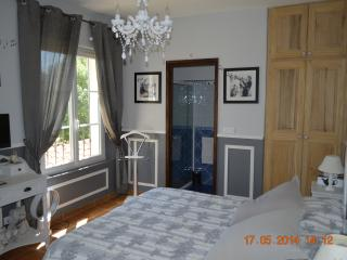 Le Moulin des Forges Grey Room - Fuveau vacation rentals
